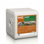 KNZ Sheep lakusool lakukivi lammastele
